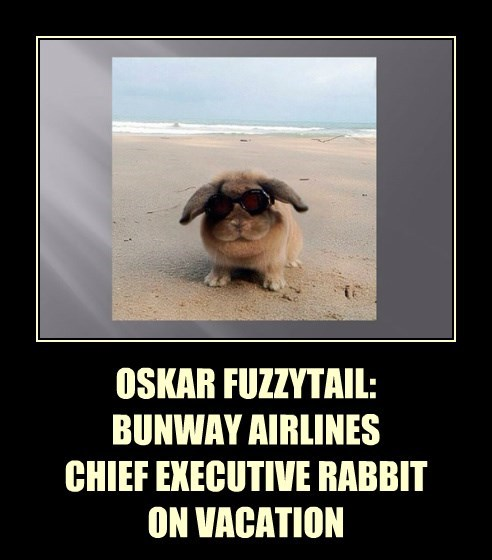 OSKAR FUZZYTAIL:   BUNWAY AIRLINES CHIEF EXECUTIVE RABBIT ON VACATION