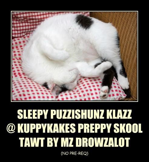 SLEEPY PUZZISHUNZ KLAZZ @ KUPPYKAKES PREPPY SKOOL TAWT BY MZ DROWZALOT