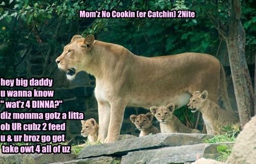 Mom'z No Cookin (er Catchin) 2Nite