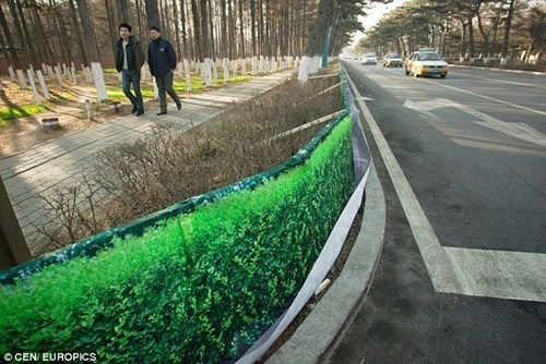 Antidepressant of the Day: China Covers Up Dead Plants With Pictures of Plants to Cheer People Up