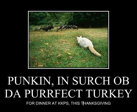 PUNKIN, IN SURCH OB DA PURRFECT TURKEY