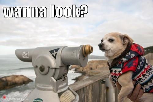 wanna look?