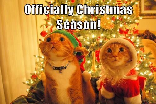 Officially Christmas Season!