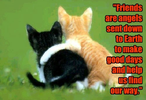 """""""Friends  are angels sent down to Earth  to make good days and help us find  our way."""""""
