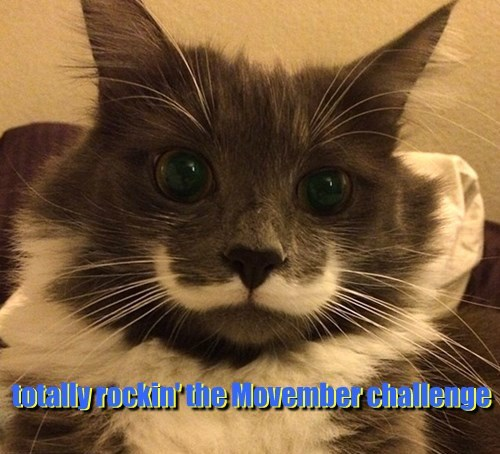 totally rockin' the Movember challenge
