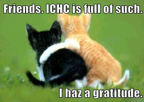 Friends. ICHC is full of such.  I haz a gratitude.