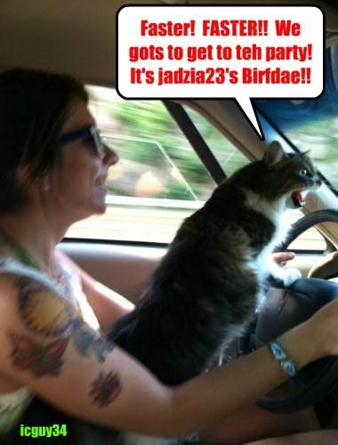 Happy Happy Birfday to jadzia23! Hopes yu habs lots ob tasty noms an' great prezzies!