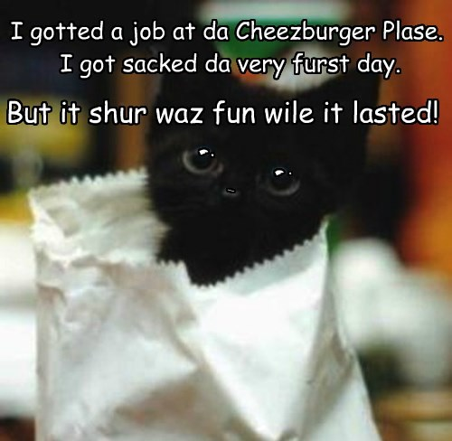 I gotted a job at da Cheezburger Plase.  I got sacked da very furst day.