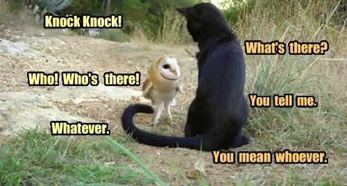The Antiknock Joke