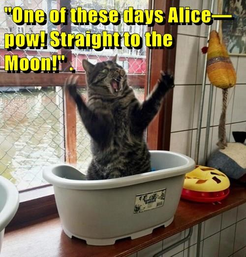"""One of these days Alice—pow! Straight to the Moon!"" ."