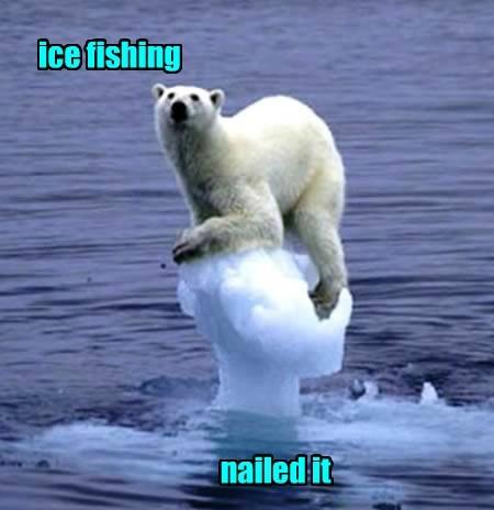 fishing,polar bear,Nailed It