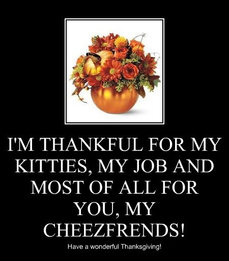 I'M THANKFUL FOR MY KITTIES, MY JOB AND MOST OF ALL FOR YOU, MY CHEEZFRENDS!