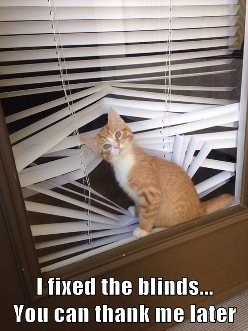 I fixed the blinds...                            You can thank me later