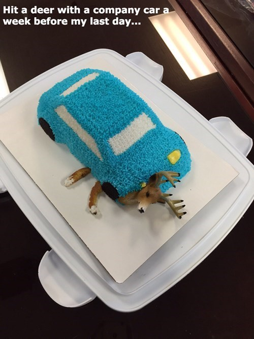 cake,monday thru friday,cars,deer,g rated