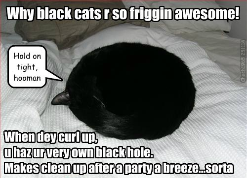 Why black cats r so friggin awesome!