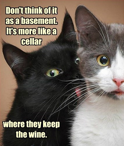 Don't think of it as a basement.  It's more like a cellar         where they keep the wine.