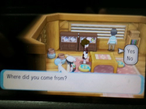 Game Freak Leaves in the Best Question in Third Gen