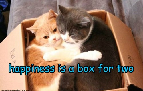 happiness is a box for two