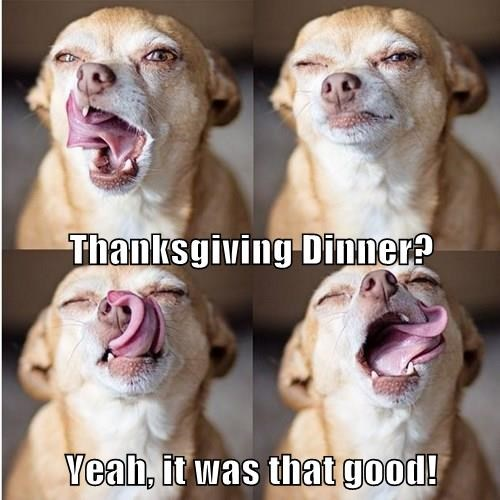 Thanksgiving Dinner? Yeah, it was that good!