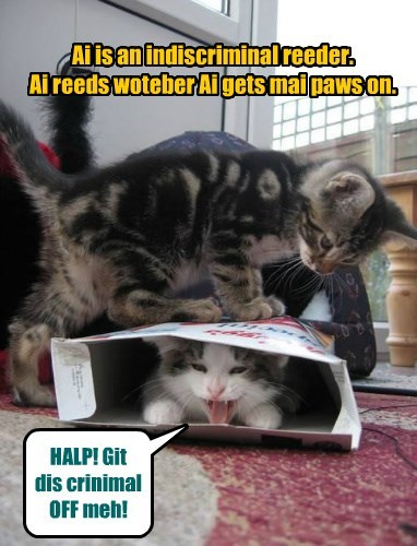 Ai is an indiscriminal reeder.  Ai reeds woteber Ai gets mai paws on.