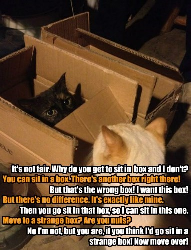 You can sit in a box. There's another box right there!  But there's no difference. It's exactly like mine.  Move to a strange box? Are you nuts?