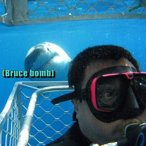 (Bruce bomb)