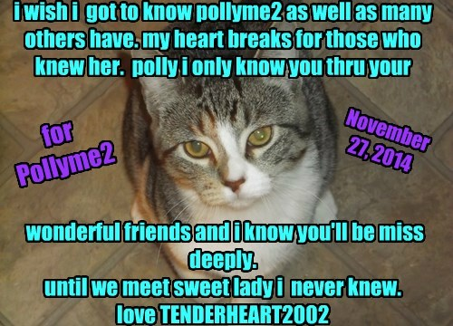 i wish i  got to know pollyme2 as well as many others have. my heart breaks for those who knew her.  polly i only know you thru your       wonderful friends and i know you'll be miss deeply.  until we meet sweet lady i  never knew.  love TENDERHEART2002