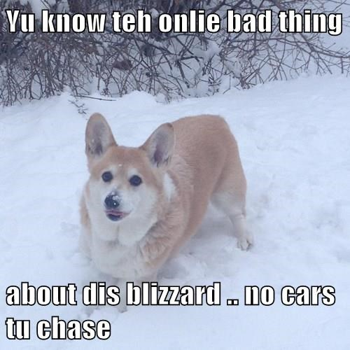 Yu know teh onlie bad thing  about dis blizzard .. no cars tu chase