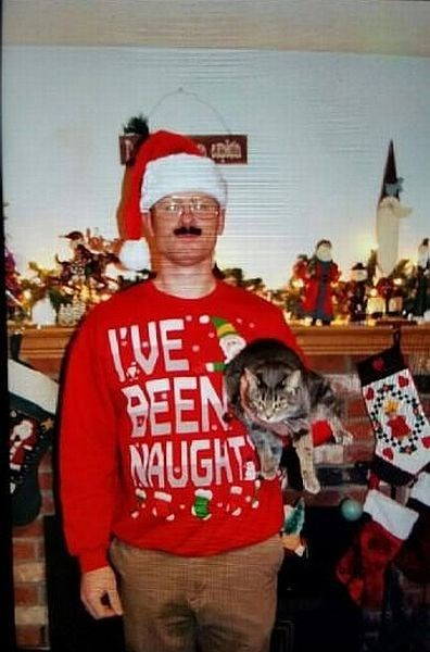 Cats,christmas sweaters,christmas,naughty,poorly dressed,g  rated