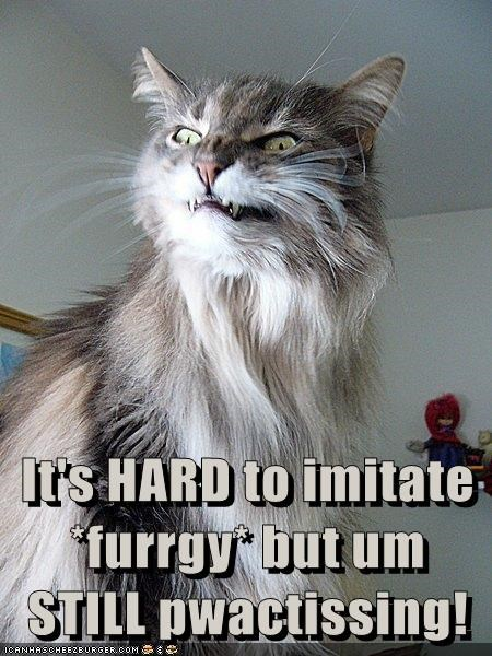 It's HARD to imitate *furrgy* but um STILL pwactissing!