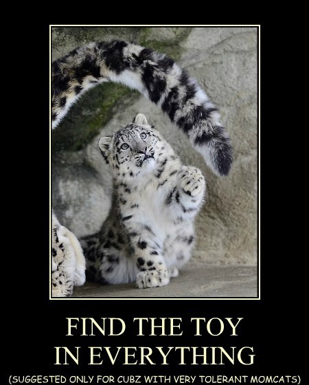 FIND THE TOY IN EVERYTHING