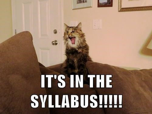 IT'S IN THE SYLLABUS!!!!!