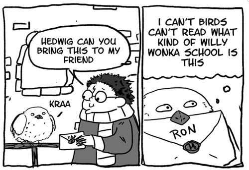 web comics,Harry Potter,birds,hedwig,magic