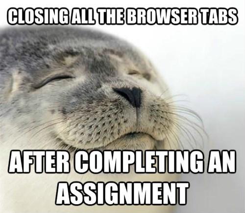 homework,school,satisfaction seal,college
