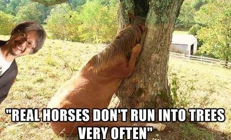 That Must Be a Horse From Skyrim or Something