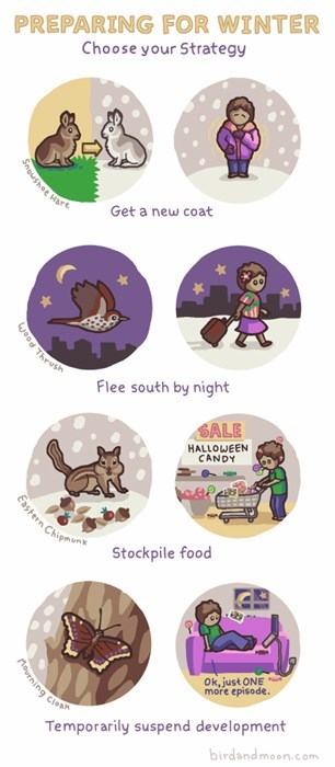 critters,winter,animals,web comics