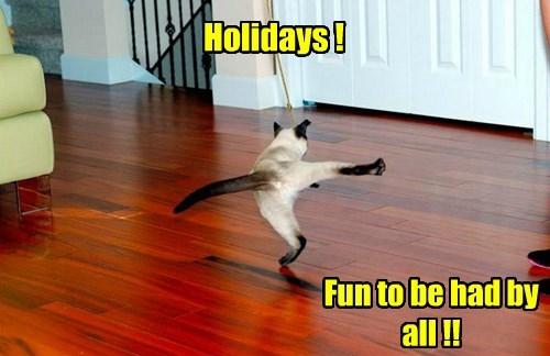 Holidays !