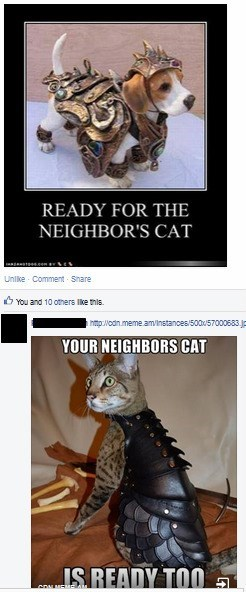 dogs,pets,nerdgasm,armor,Cats,failbook,g rated