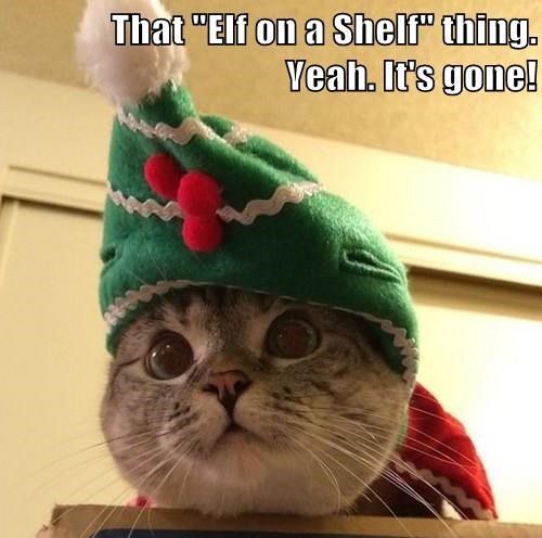"That ""Elf on a Shelf"" thing.                                                           Yeah. It's gone!"