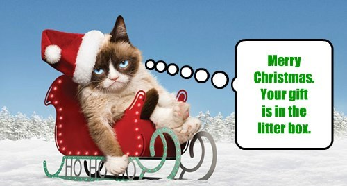 Merry Christmas.   Your gift  is in the  litter box.