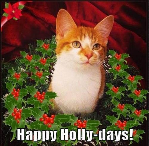 Happy Holly-days!