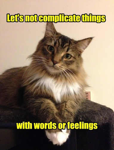 feelings,Cats,can opener