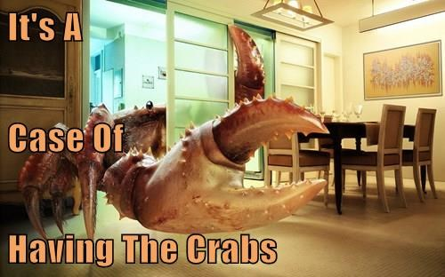 It's A  Case Of  Having The Crabs