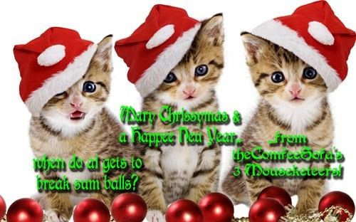 NCcharmer, Lawah & littleAPC wish all our frends a fun-filled Chrissymas