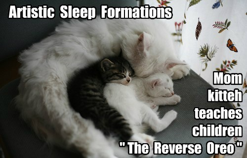 Artistic Sleep Formations