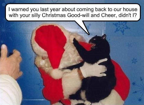 I warned you last year about coming back to our house with your silly Christmas Good-will and Cheer, didn't I?