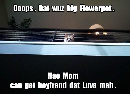 boyfriend,jerk,youre welcome,Cats