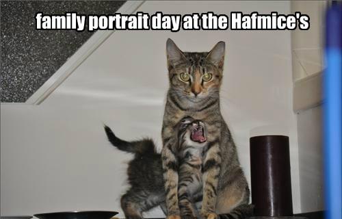 This is why Weekant Hafmice sings.