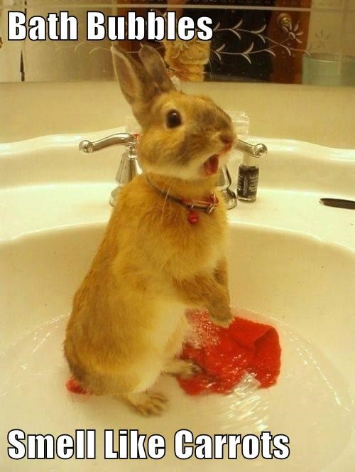 Bath Bubbles  Smell Like Carrots
