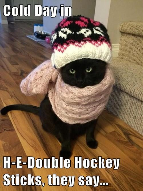 Cold Day in   H-E-Double Hockey Sticks, they say...